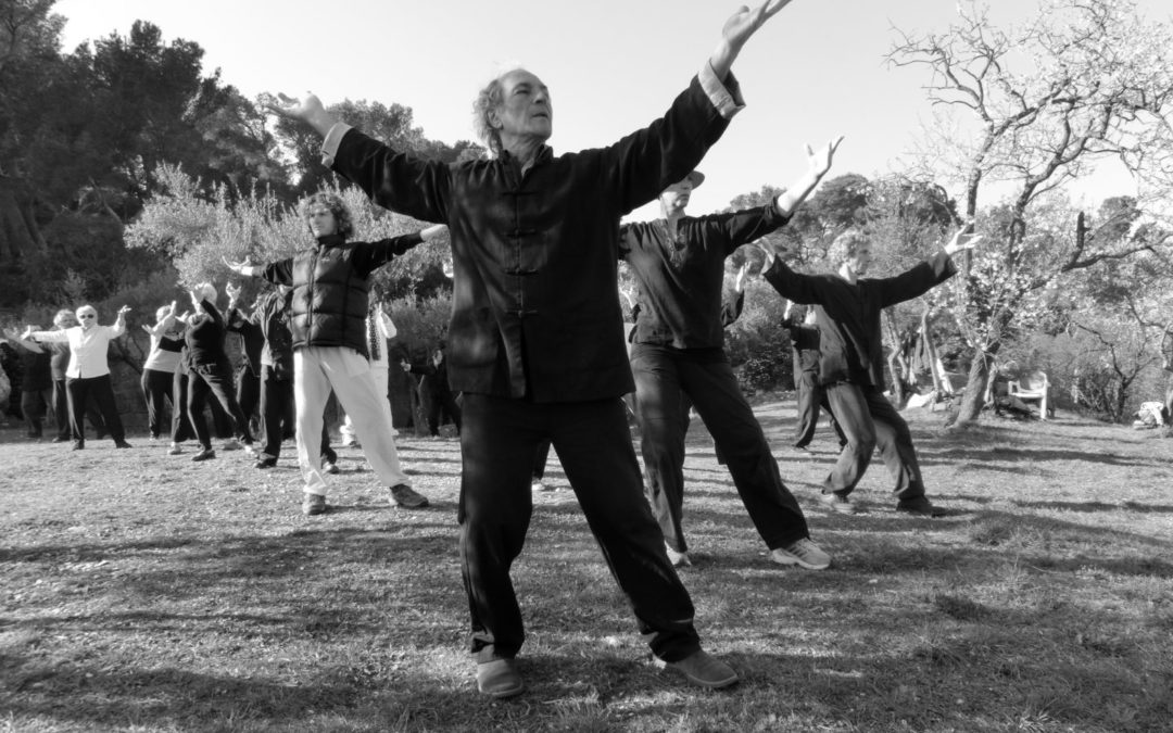 FORMATION de qi gong et tai chi chuan, niveau débutant à avancé, les 17 et 18 avril par Lou Yan de l'ITCCA Méditerranée