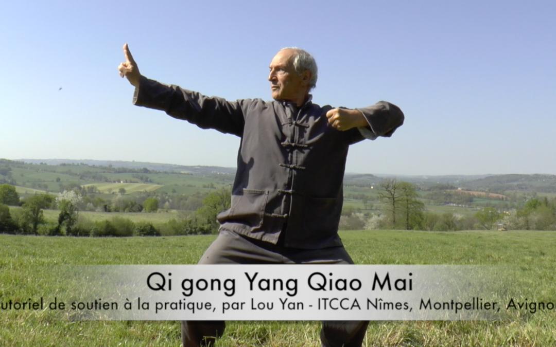 Les directs de Lou Yan : un enseignement éclairé par la pratique