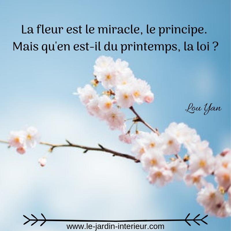 La fleur est le miracle