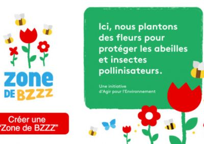 Zone de BZZZ