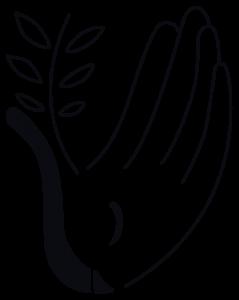 logo LMS Pc NetB