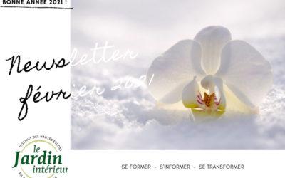 Les infos de février : ☯ Bienvenue 2021 ! 🎉 formation méditation, cours en ligne, vidéos et articles ☘️