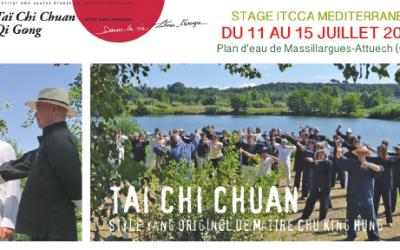 Stage d'été de tai chi chuan par ITCCA méditerranée – 11 au 15 juillet 2018